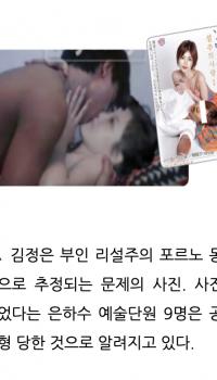 愕然たる韓国の対北情報戦チラシ